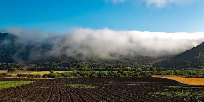 Farm, California, Hdr, Field, Plowed