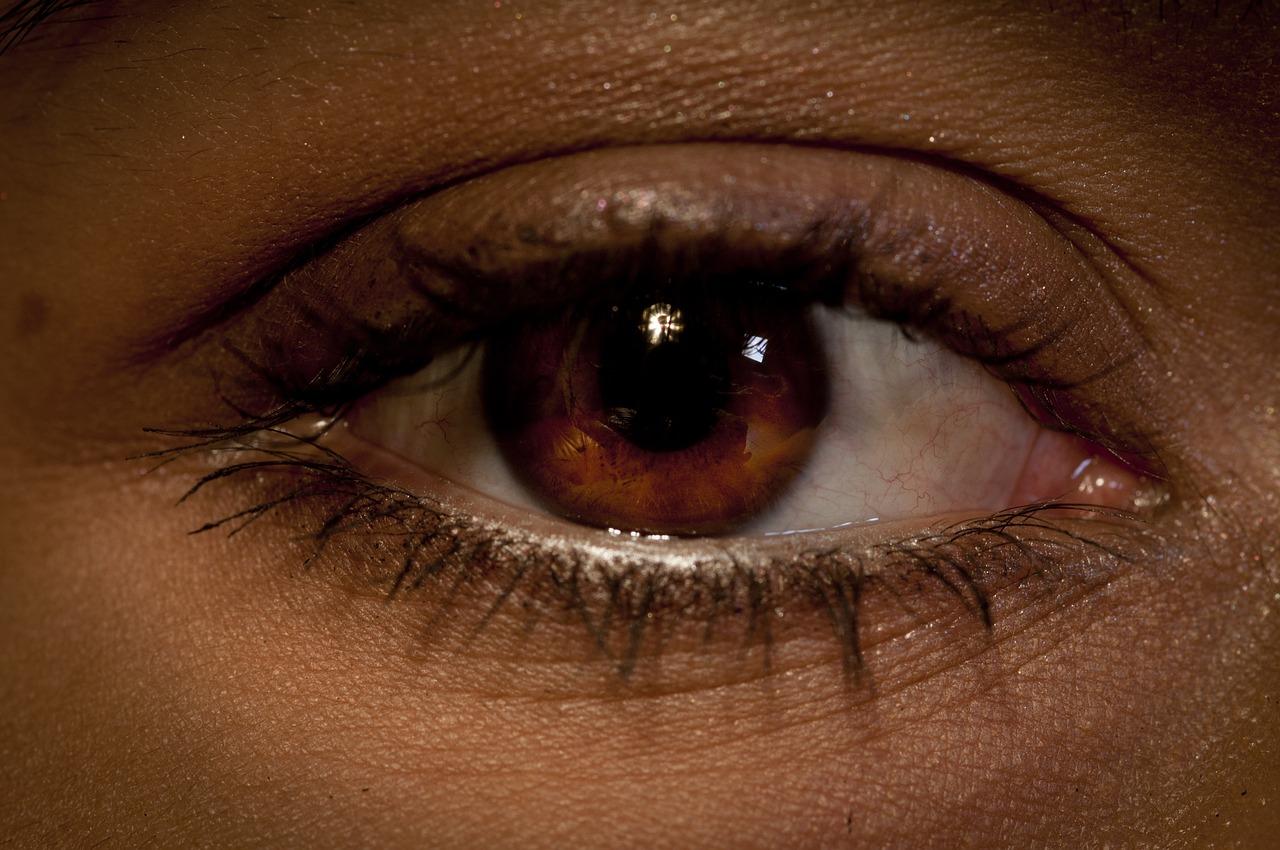 национальном антитеррористическом фото мужских карих глаз всё