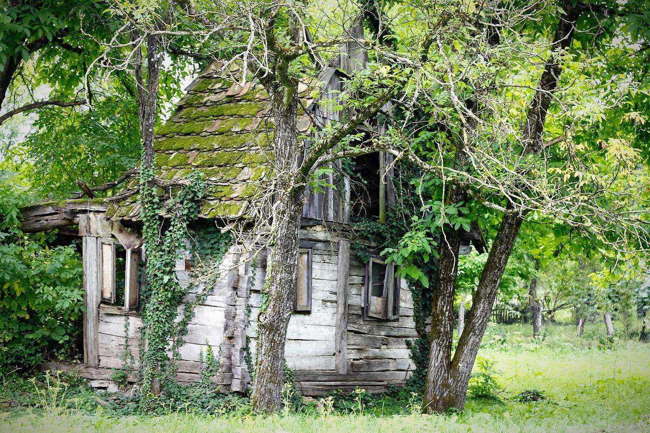 этим заболеванием картинки руины домов визитка мастера ремонту