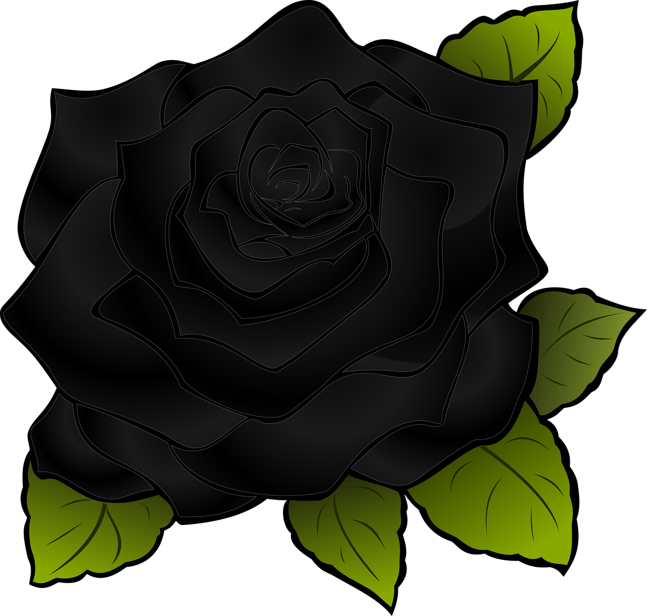 Rosa Flor Preta Grafico Vetorial Gratis No Pixabay