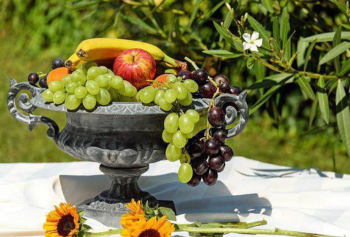 Fruit Bowl, Shell, Fruit, Fruits
