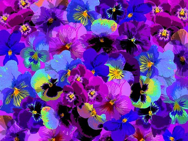 Illustration gratuite violette printemps jardin fleur image gratuite sur pixabay 1600189 - Image fleur violette gratuite ...