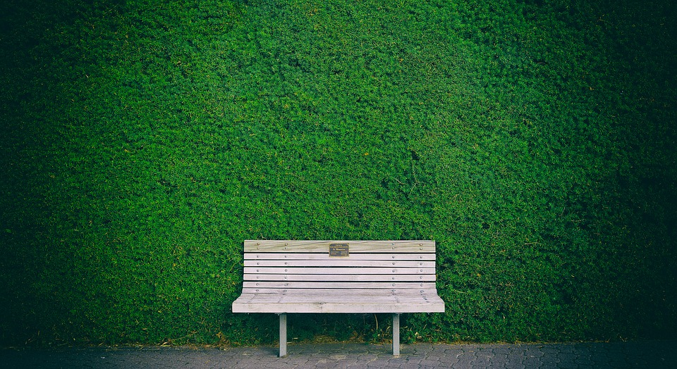Bench Hedge Green - Free photo on Pixabay