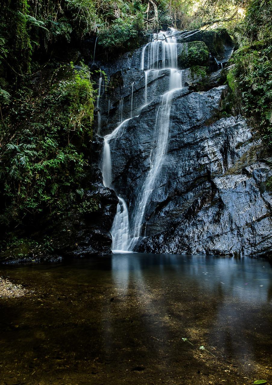 это светочувствительный водопад жизни картинки именно