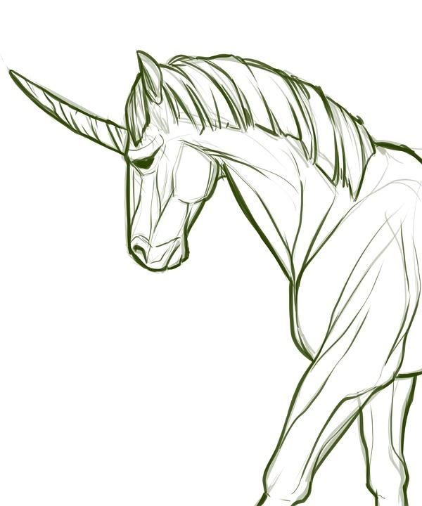 100 Free Pony Horse Illustrations Pixabay