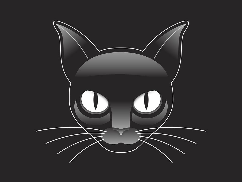 obrázky čierne dievča mačička