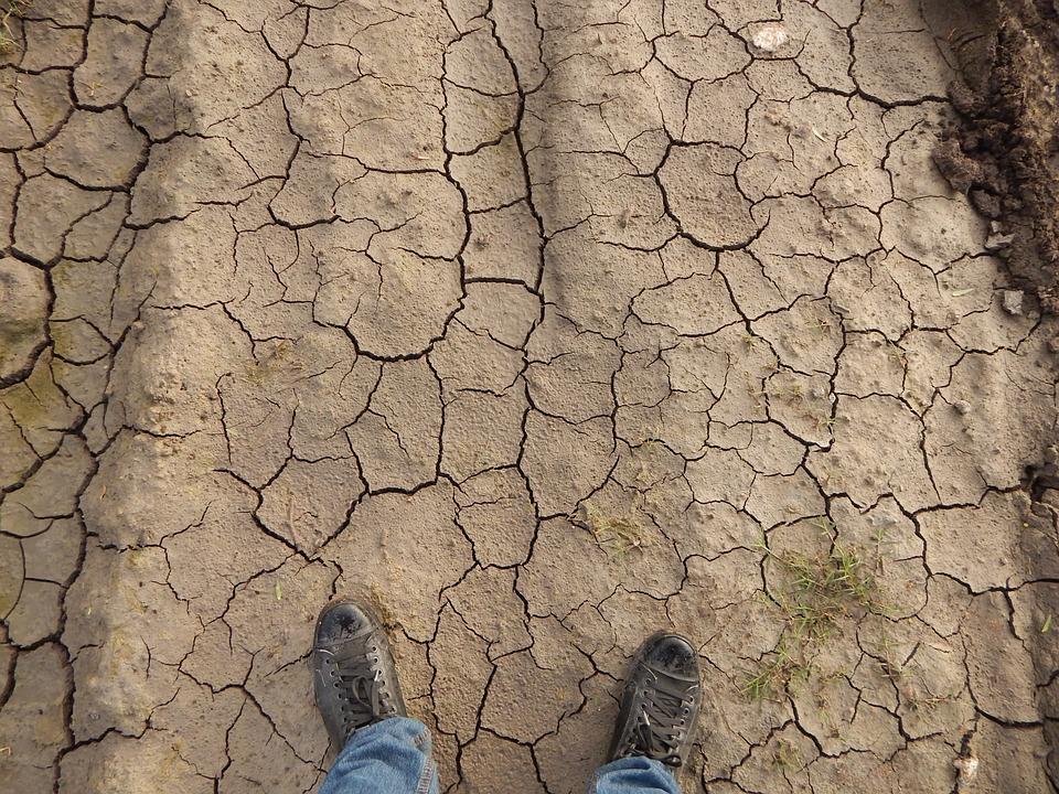 Tierra, Sequía, Sequedad, Infertilidad, Suelo