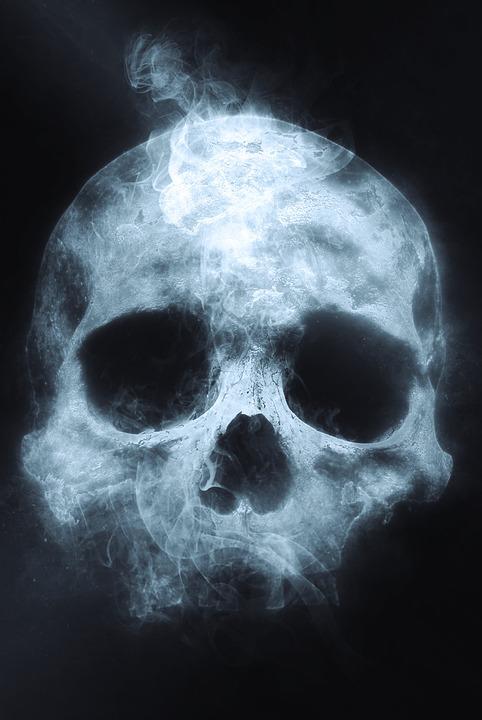 2,000+ Skull Pictures & Images [HD] - Pixabay - Pixabay