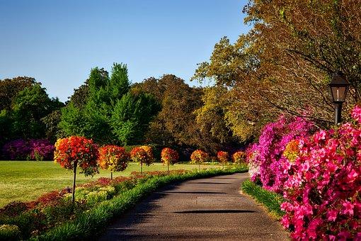 Bellingrath Gardens, Alabama, Landscape