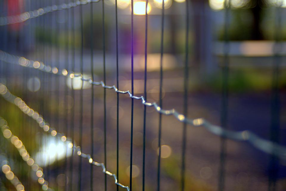 Der Zaun Rankgitter Draht · Kostenloses Foto auf Pixabay