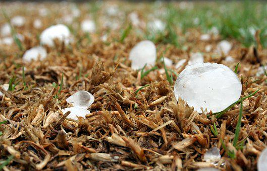 Hailstone Storm Highveld South Africa Hail