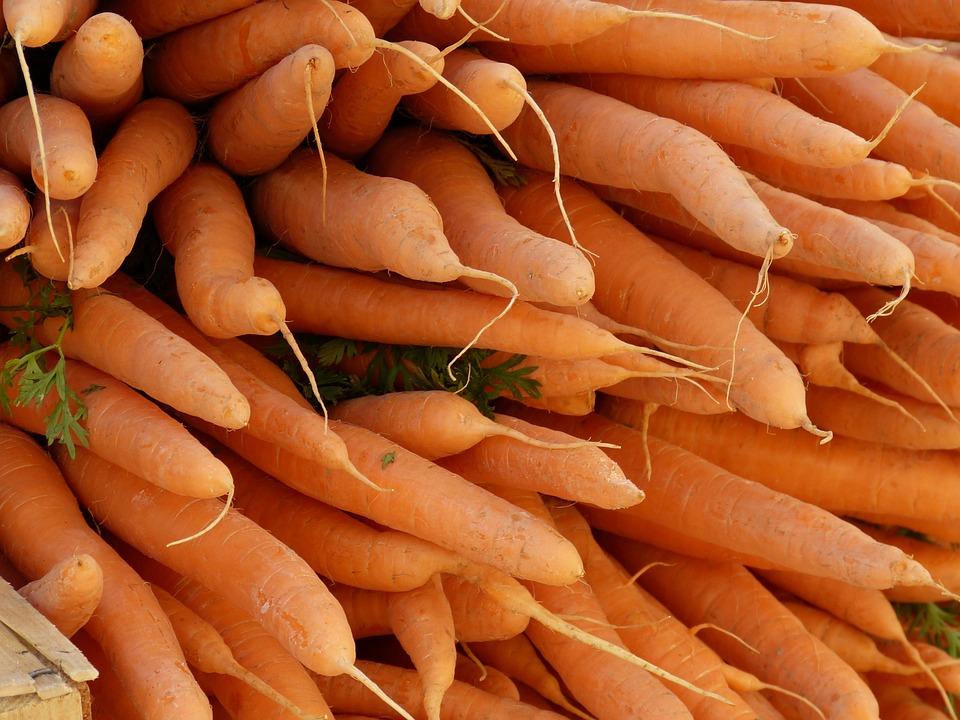 Mohren Gemuse Karotten Kostenloses Foto Auf Pixabay