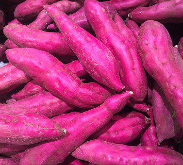 芋, サツマイモ, 薩摩芋, 赤紫, 野菜, 西友, リビン