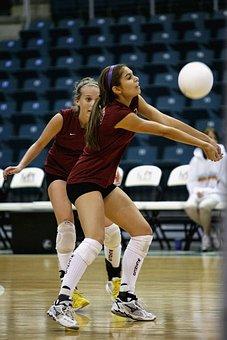 Volleyball, Player, Female, Teamwork