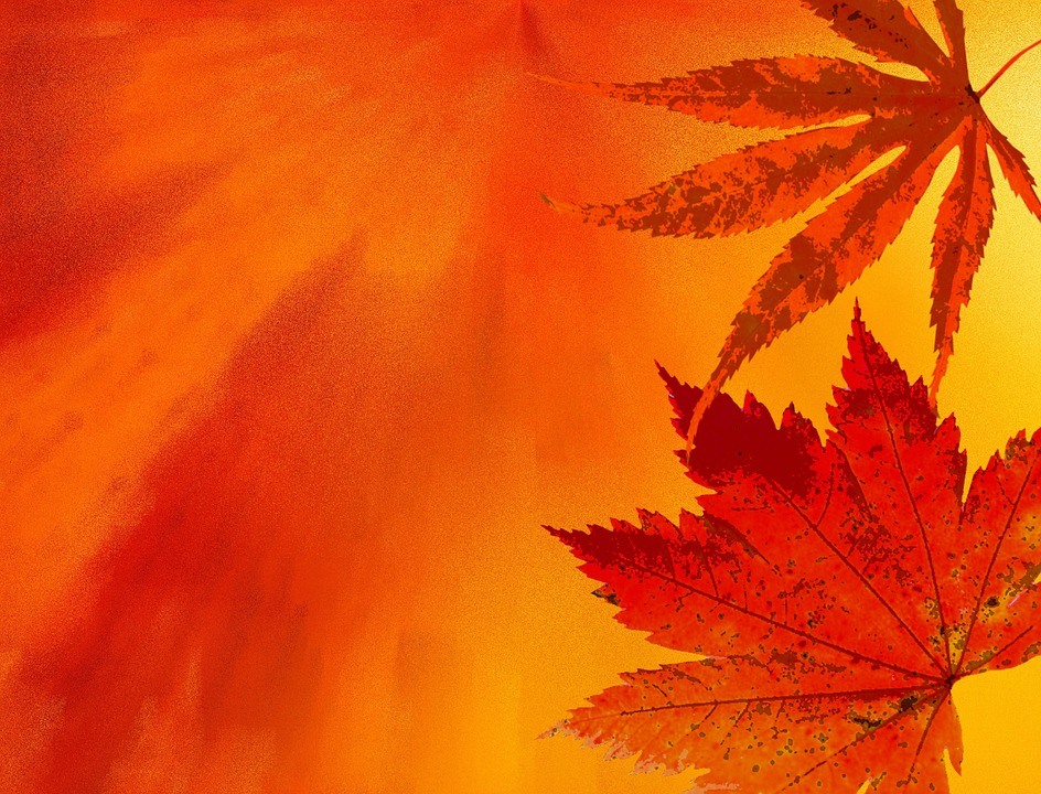 Herbst Hintergrund Herbstfarben Kostenloses Bild Auf Pixabay