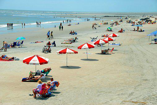 Beach Day, People, Fun, Recreation