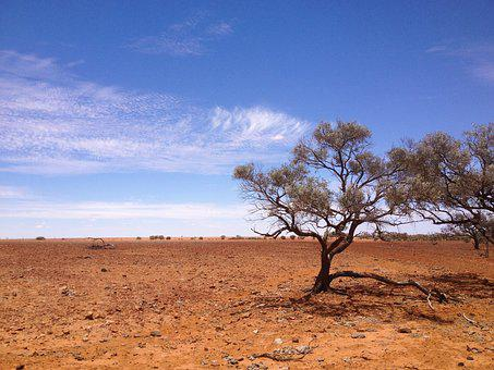Simpson Desert Top 10 Australian Deserts to Visit in 2020