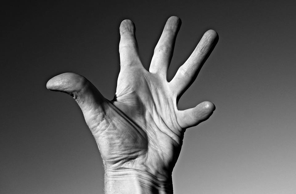 Hand, Palm, Finger, Daumen, Linien, Lebenslinie