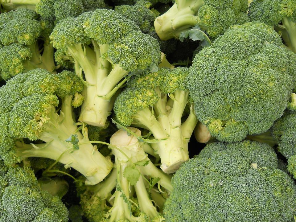 Broccoli, Green, Food, Healthy, Eating, Vegetarian