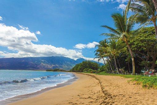 Diving in Hawaii, Hawaiian Coastline