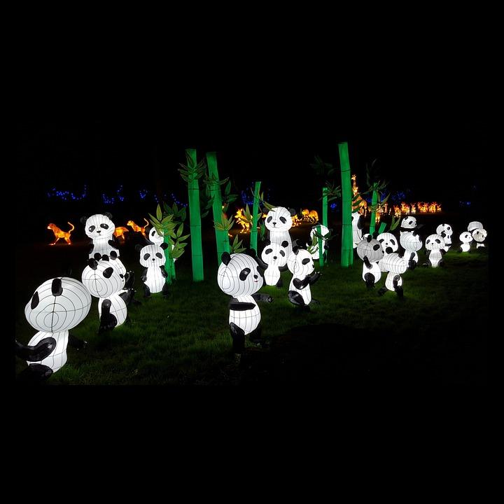 Panda Lanterns Cultural Free Photo On Pixabay