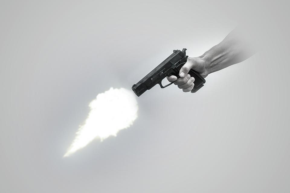 Image Coup De Feu coup de feu museau pistolet · image gratuite sur pixabay