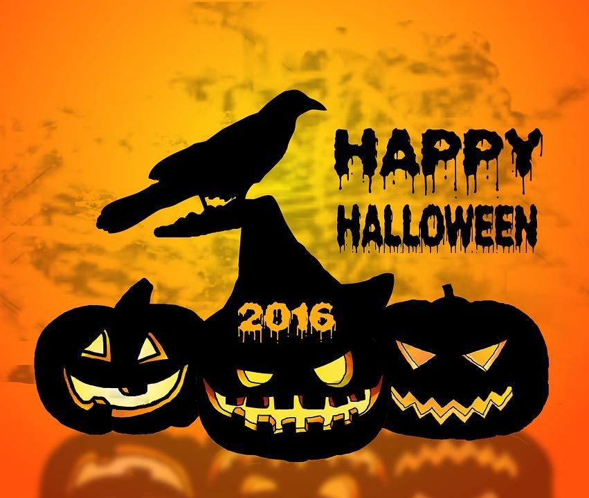 illustration gratuite halloween citrouille corbeau image gratuite sur pixabay 1632539. Black Bedroom Furniture Sets. Home Design Ideas