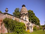 pineapple, scotland