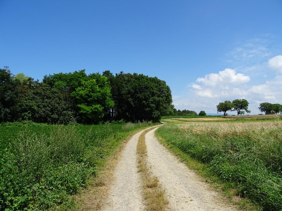 Free photo: Nature, Landscape, Away, Silent - Free Image on ...
