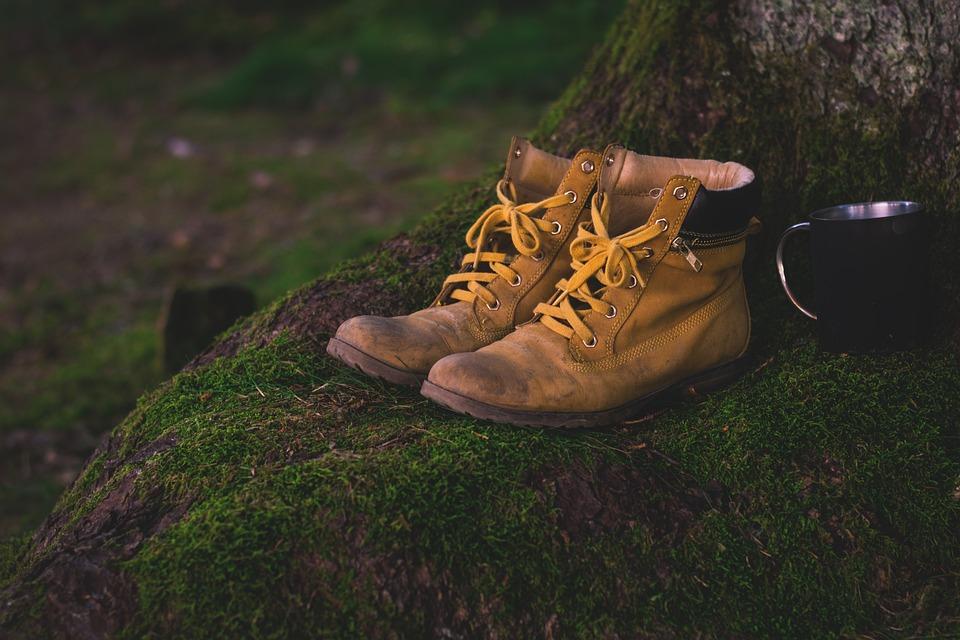 Sepatu Bot, Sepatu, Lumut, Sepatu Hiking, Usang