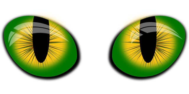 Cat Eyes Velo