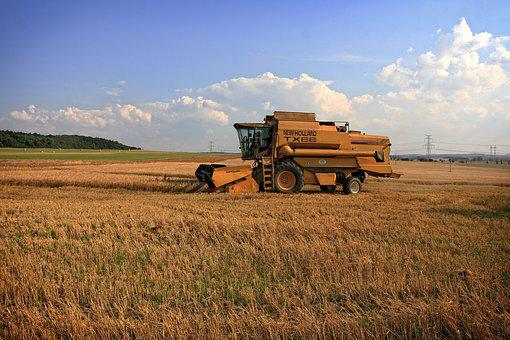 Harvest, Harvester, Blue Sky