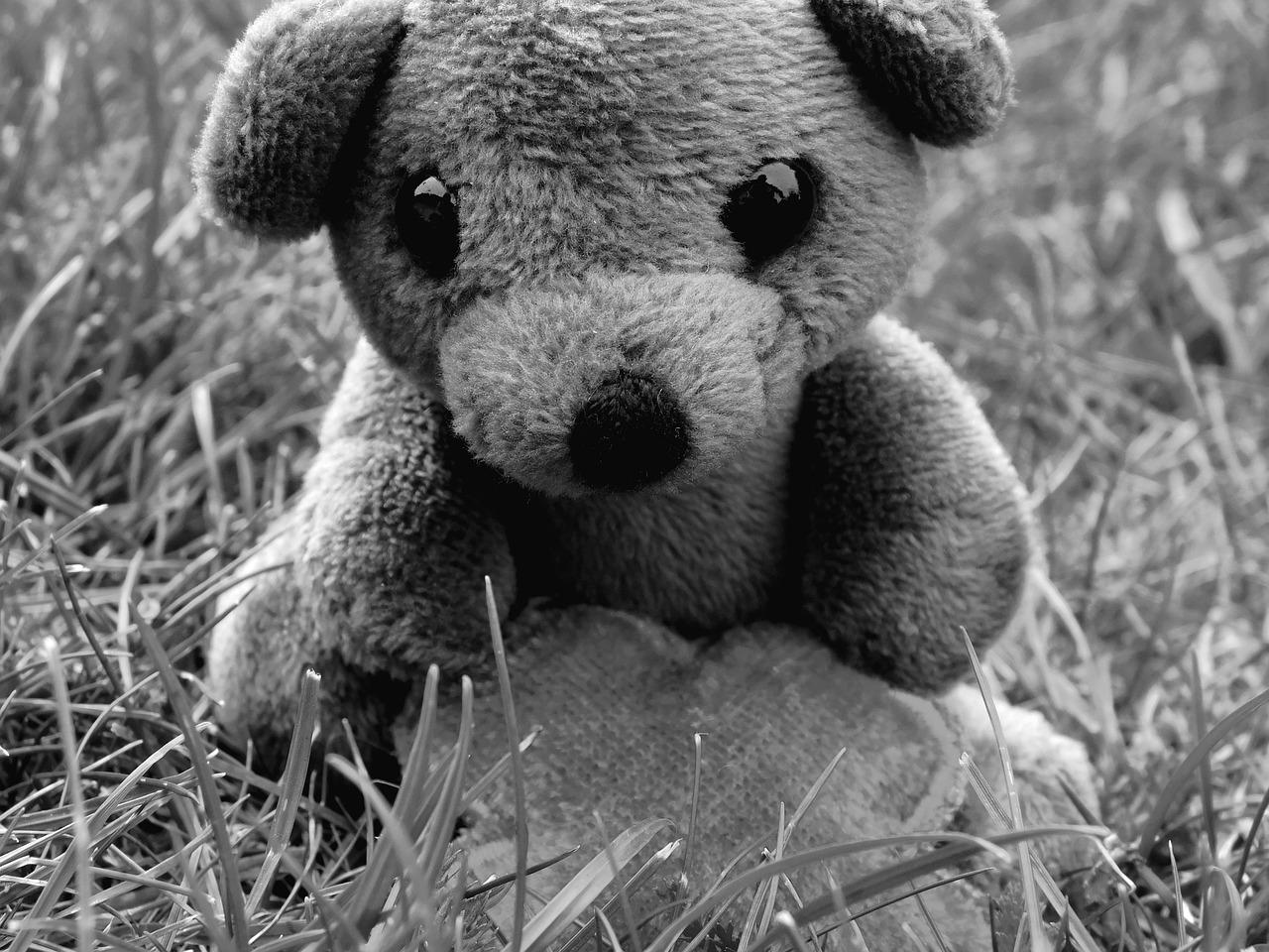 Печальный мишка картинка