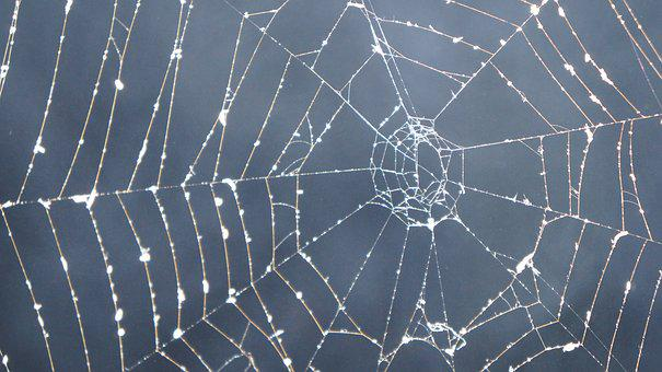 Cobweb, Dark, Smoke, Mystical