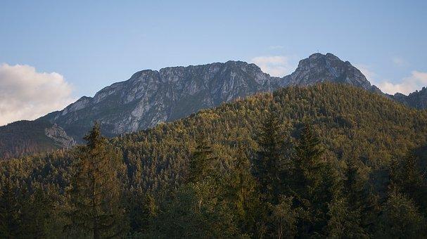 Polska, Góry, Tatry, Przyroda, Natura