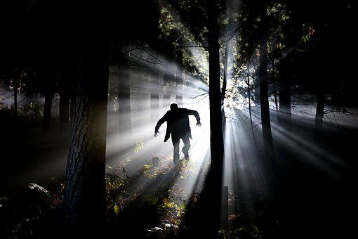 Eery, 恐怖, 茎, フランケンシュタイン, 森林, 精神病質者, 攻撃