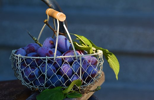 Basket Images Pixabay Download Free Pictures