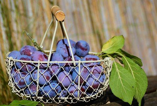 Plommon, Fruktkorg, Frukt, Violett