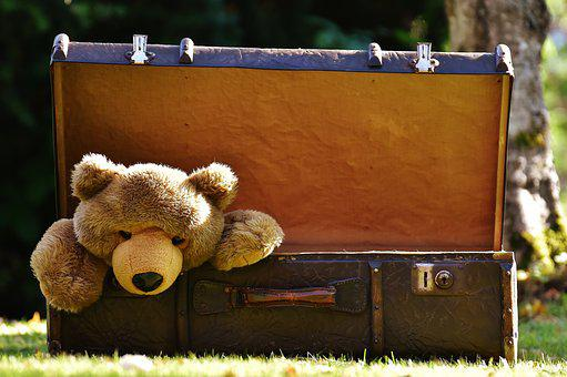 Luggage, Antique, Teddy, Soft Toy