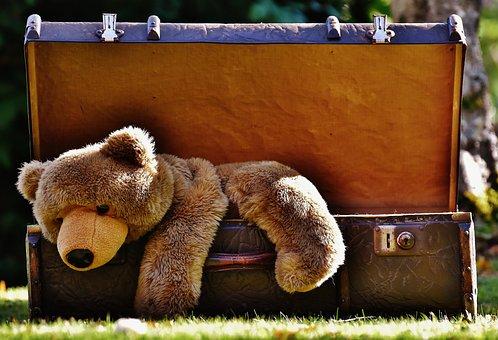 Koffer, Antik, Teddy, Plüschtier