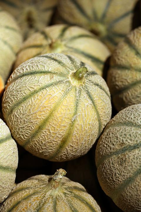 Melone, Frutta, Cibo