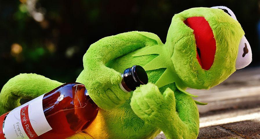 картинки лягушка пьет коктейль все чаще