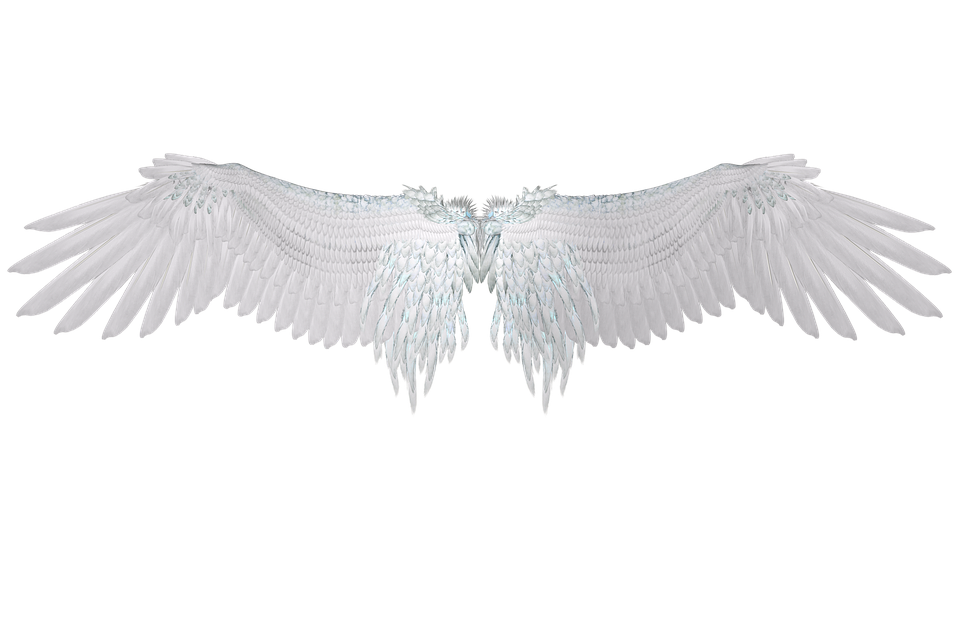 Wing White Feather Angel · Free Image On Pixabay