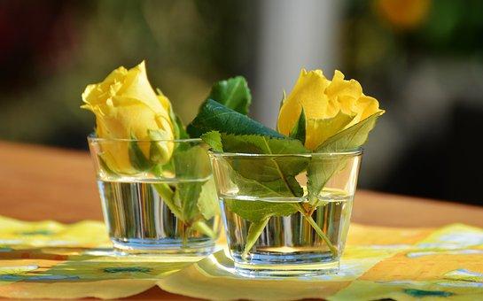 Glas, Vase, Gelbe Rosen, Dekoration
