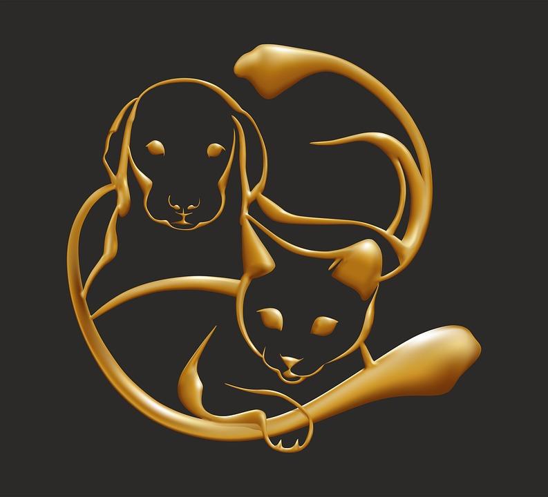 Illustration Gratuite Or Chien Chat Animal Bijou