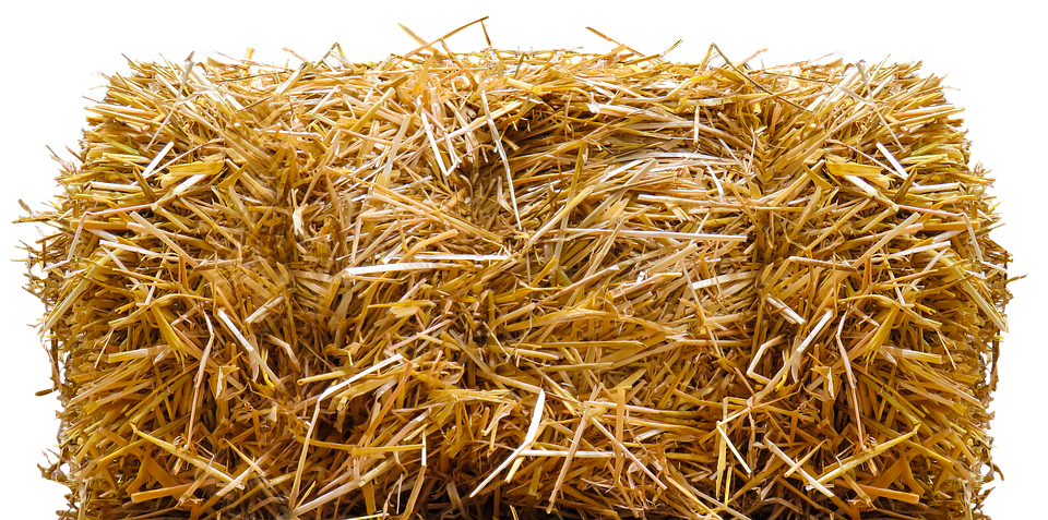 Free illustration: Straw, Straw Bales, Png, Isolated - Free Image on ... Blue Easter Eggs