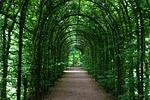 tunnel, promenade