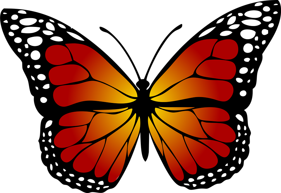 Butterfly Monarch Abstract · Free image on Pixabay