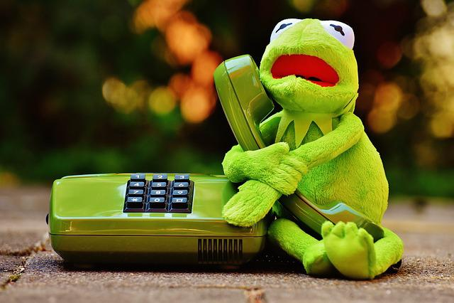 Funny Kermit The Frog: Kermit Frog Phone · Free Photo On Pixabay