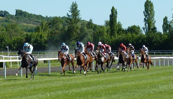競馬, ヒッポドローム, 馬, 騎手, レーシング, カステラ-Verduzan